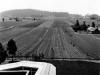 photos-1930s-50s-_0015